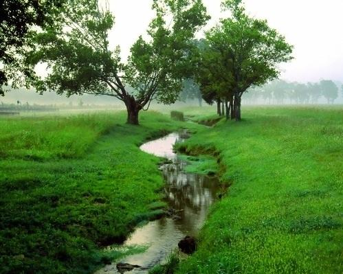 Экологически чистые страны