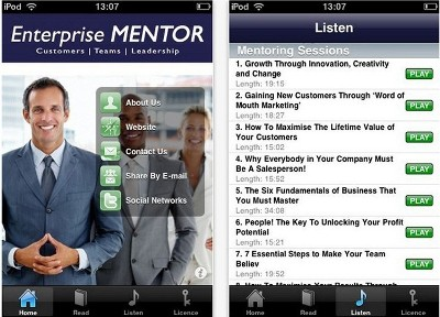 Enterprise Mentor