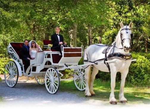 Лошадь и Карета
