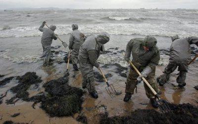 Масштабная экологическая катастрофа