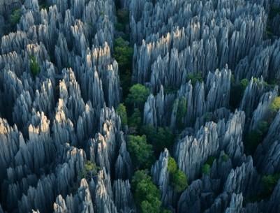 Каменные леса, Китай