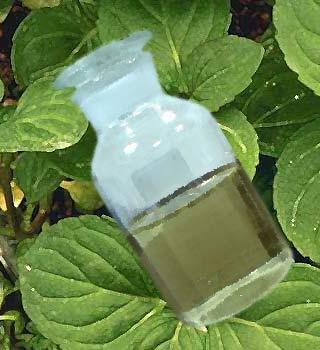 Мятное масло